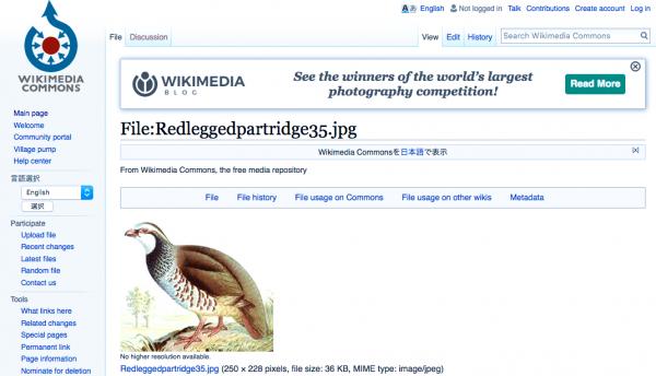 wikimedia commons スクリーンショット